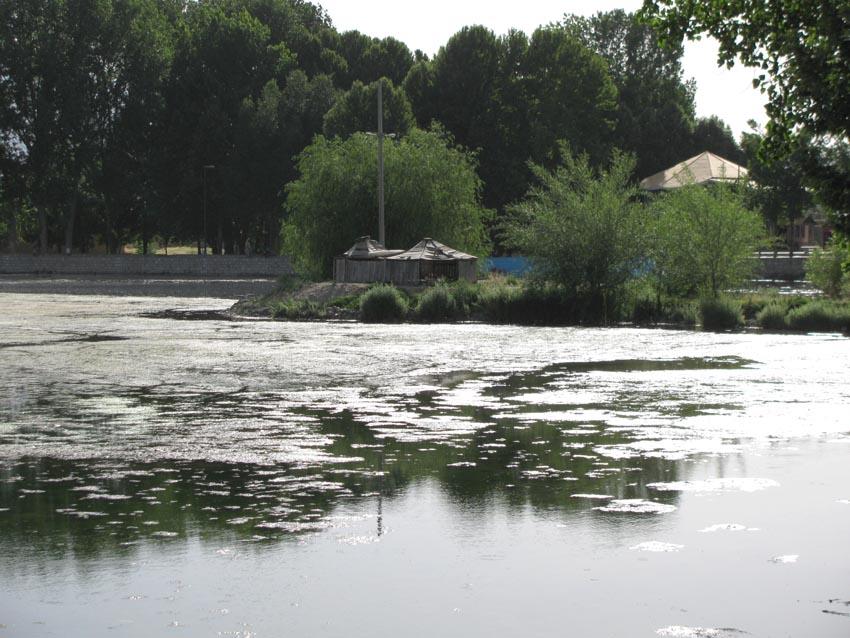 کلبه ای روی دریاچه ای که از آب چشمه در داخل لردگان تشکیل شده است.